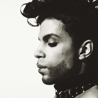 Musica - Prince, le sue ceneri esposte