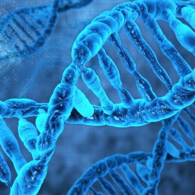 Scienza – Dopo la morte si vive, ma poco poco