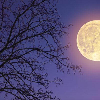 Arriva la Super Luna di fragola