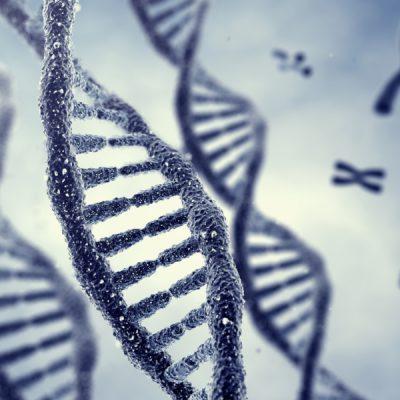 Scienza, completata la mappa del genoma umano