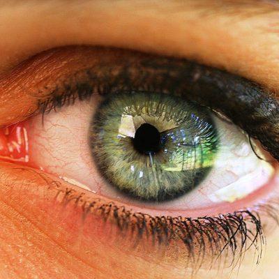 Hai lei pupille più grandi? Sei più intelligente