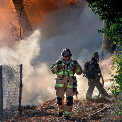 Incendi nel Salento, ettari di ulivi in fumo