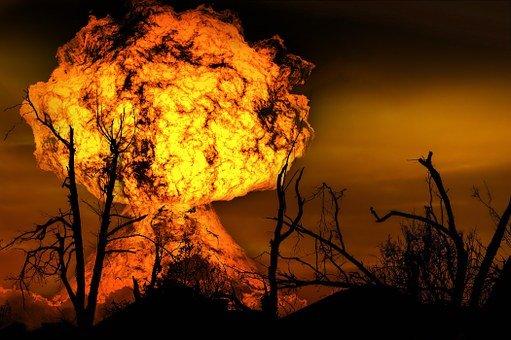 Si riaccendono le fiamme nel bosco Difesa Grande nel Barese