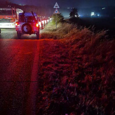 Gravina, un incendio doloso brucia il bosco Difesa Grande distruggendo 200 ettari