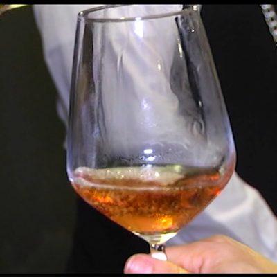 Puglia Wine World: una nuova piattaforma per promuovere il vino pugliese