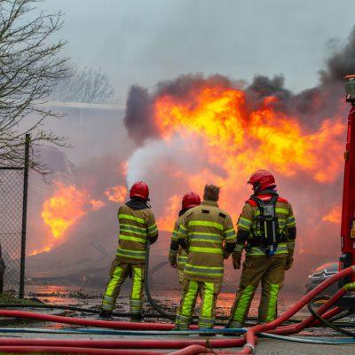Incendi in Sardegna, proseguono le operazioni di soccorso. Per Coldiretti serviranno 15 anni per ricostruire i boschi
