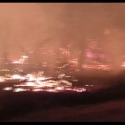 La Puglia continua a bruciare: ettari di bosco in fumo nel Foggiano e Barese e strutture di un lido distrutte nel Tarantino